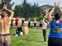 Yoga in the Vineyards hosted by Alfa Romeo